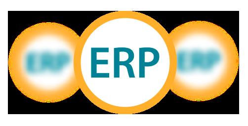 servicios/desarrollo_de_erp_color.png
